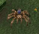 uo-big-spider