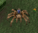 uo-big-spider