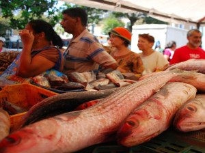 4 millones de kilos de proteínas pesqueras garantizados para el pueblo