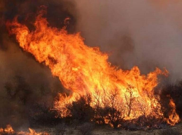 Presidente argentino viaja a zona afectada por incendios