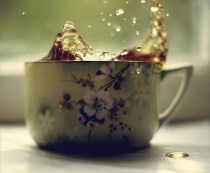 cafeasarind_jun13