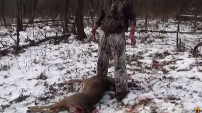 How to Gut a Deer Instructions