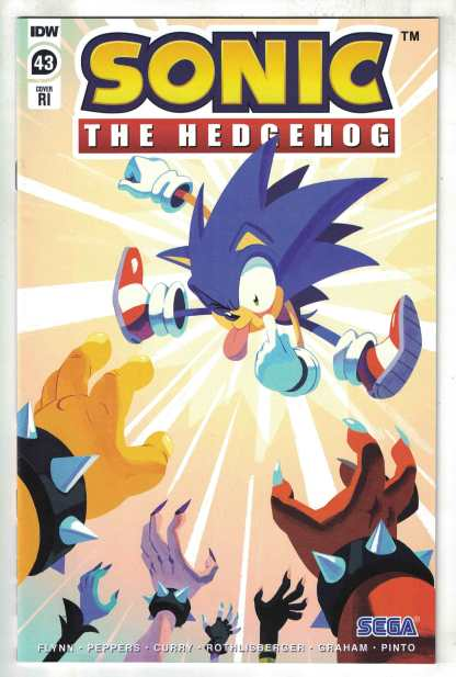 Sonic the Hedgehog #43 1:10 Fourdraine Variant IDW 2018 VF/NM