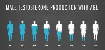 testosterone_decline_levels