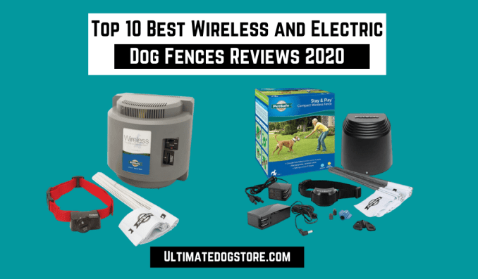 Wireless and Electric Dog Fences
