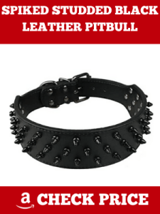 SPIKED STUDDED BLACK LEATHER PITBULL BOXER KINGDOM DOG COLLAR
