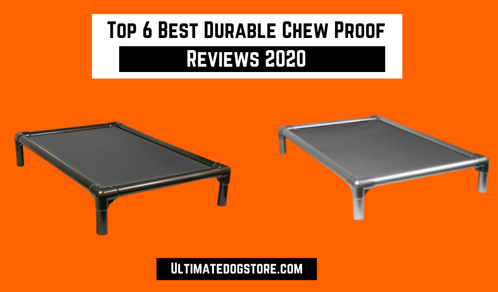 Top 6 Best Durable Chew Proof Dog Beds That Actually Work