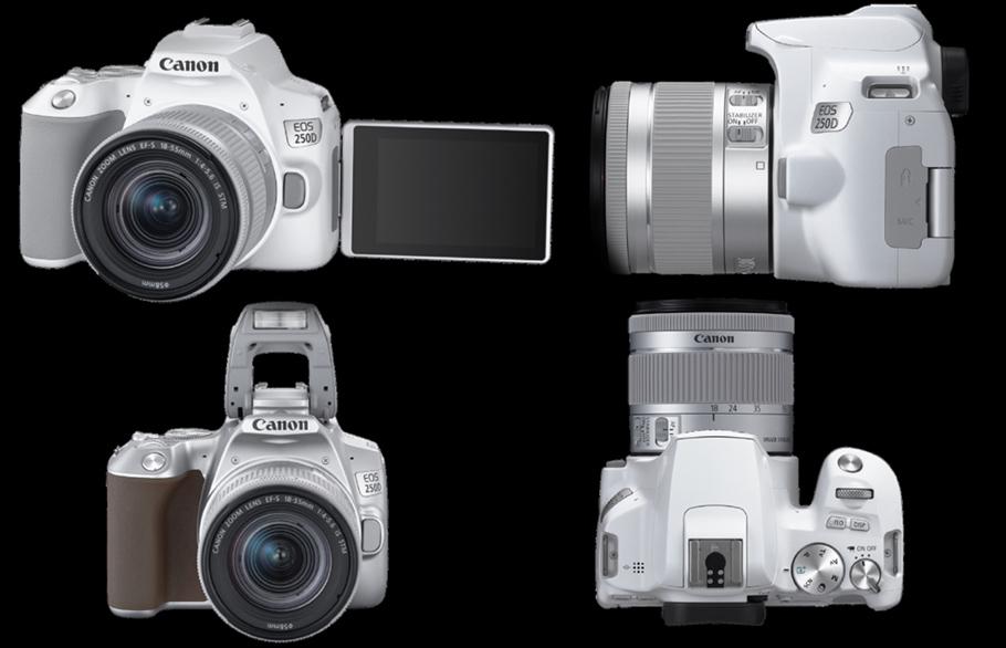 Canon treibt´s bunt: EOS 250D ist  Aufsteiger in drei Farbvarianten