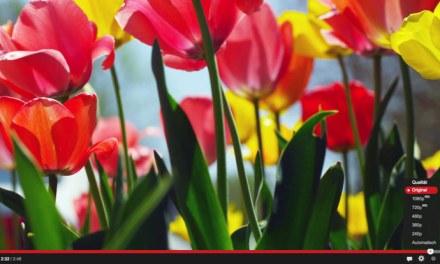 Ultra HD Videos der Woche – KW 16