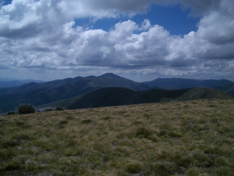 Feathertop, a Victorian Alpine must-do