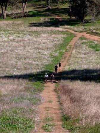 The Wagga Wagga Trail Marathon