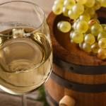 白ワインのイメージ White Wine Pic