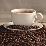 コーヒーオリゴ糖で脂肪燃焼と整腸作用
