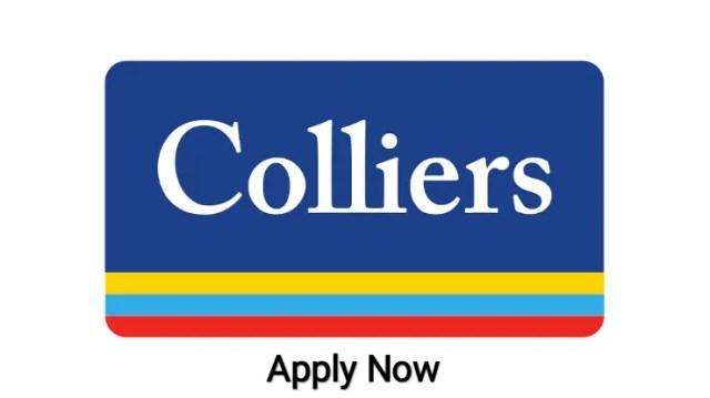 Colliers International Hiring|BE BTech |Civil Engineers