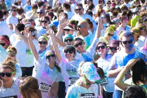 Color Vibe 411