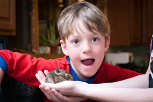 Nathan (my son) Being Overjoyed About The Bunny