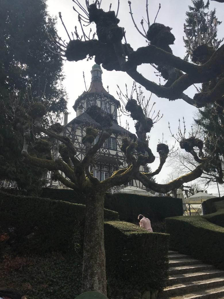 Alberge du Zoo visto de dentro do Parque