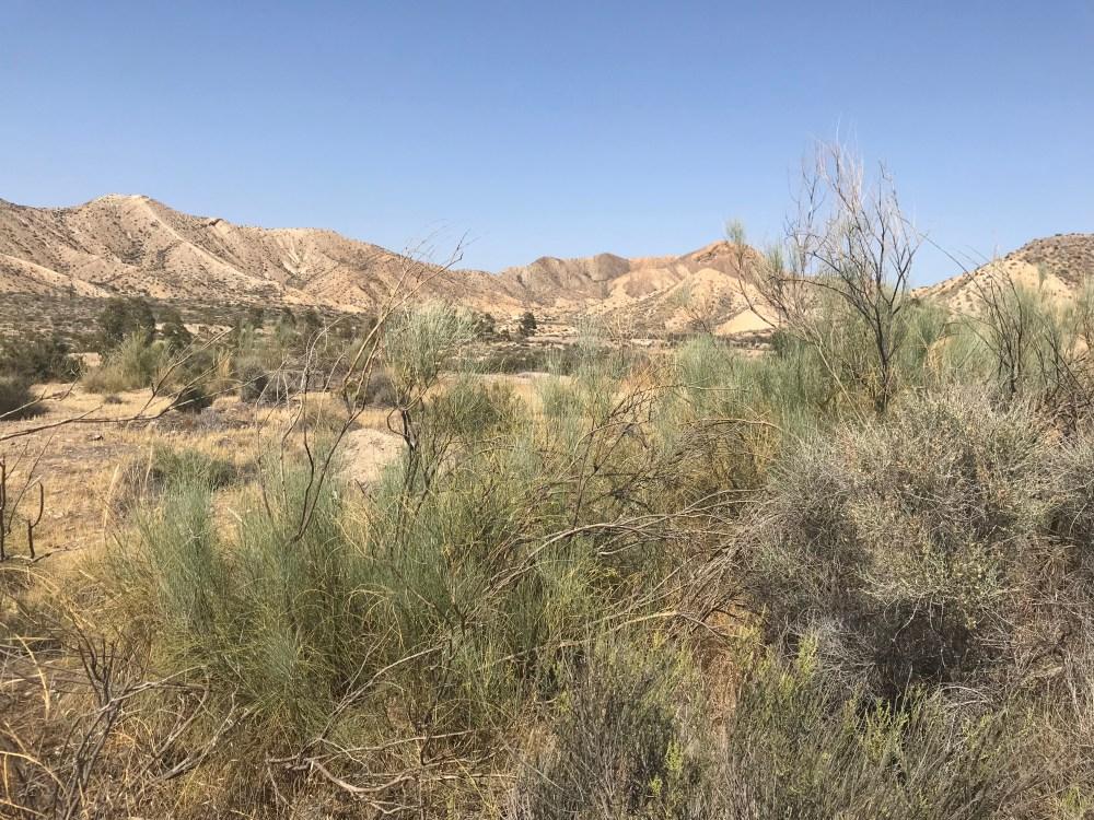 O contraste de bege é o que marca todo o parque do Deserto de Tabernas