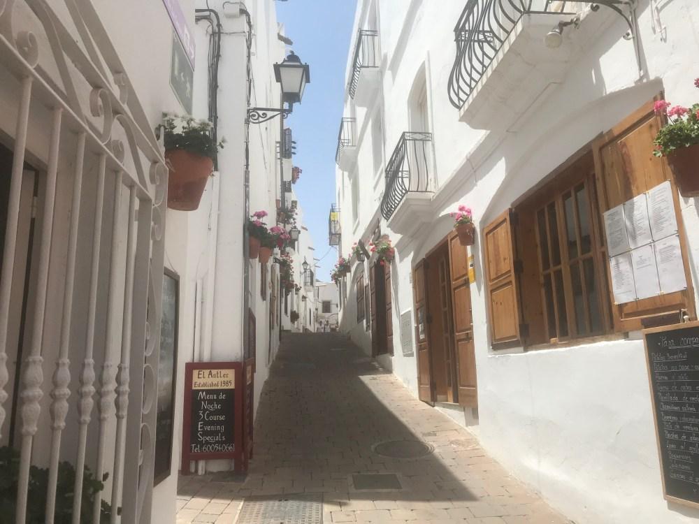 A beleza singela das flores e o branco que vimos na viagem à Mojácar, Almeria