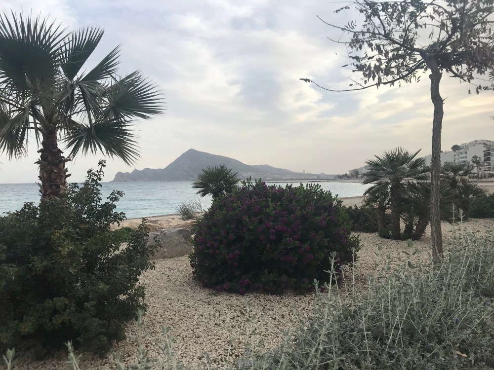 A praia de Altea tem um jardim lindo até no inverno