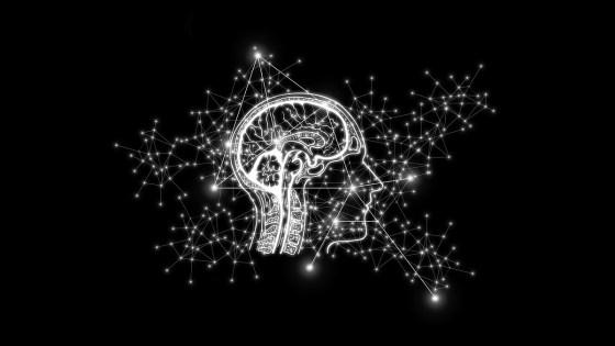 Dois remédios contra Alzheimer não dão bom resultado