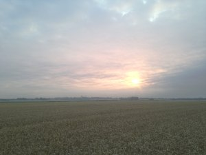 Early morning training runs across The Fens