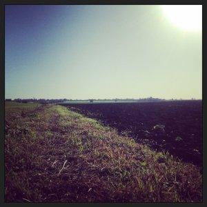 Fenland trail on the Half Term XC Run