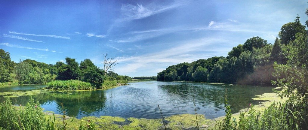 Running around The Lake at Clumber Park
