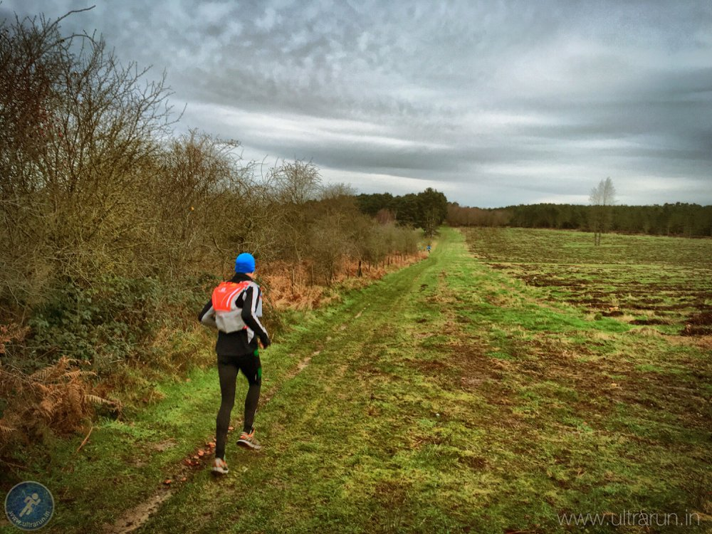 Running Through The Brecks