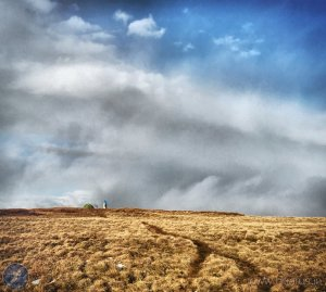 Checkpoint 14 appears on Dodd Fell