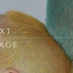 huawei-next-image-awards-2019-ultravioleta
