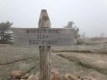 Gorham Mountain Summit