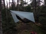My hammock setup