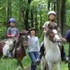 障害者乗馬、子どもたちの体験乗馬が中心です。