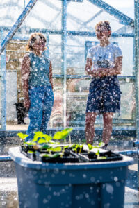 Two women experiment with strawberry plants in a greenhouse.