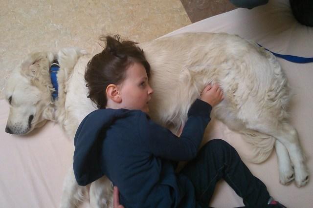 le formation en zoothérapie utile pour dialoguer avec les enfants atteints de troubles variés
