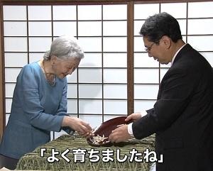 皇后さま 伝統の養蚕行事で「上蔟」作業