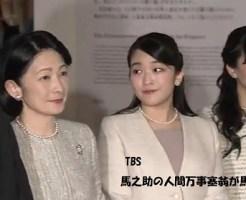 陛下即位30周年記念展秋篠宮紀子さま眞子さま佳子さまその2