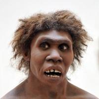 ネアンデルタール人、欧州で現生人類と数千年間共存?