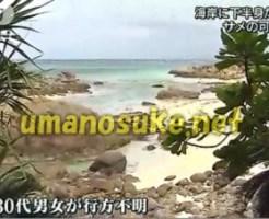 """サメか…海岸で""""人の下半身""""見つかる"""
