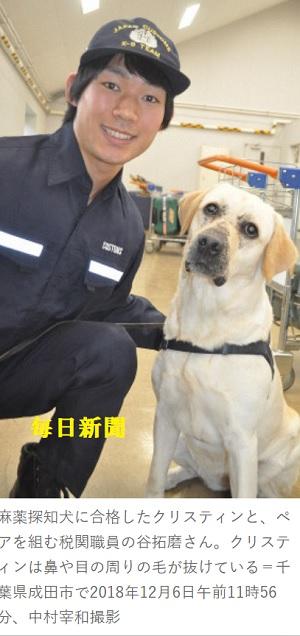 擦り傷だらけの麻薬探知犬 新千歳空港でデビュー