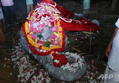インドの88歳のおばあちゃん象大往生