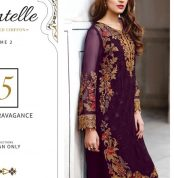 Chantelle Embroidered Chiffon Collection Vol-05 (D-05B)