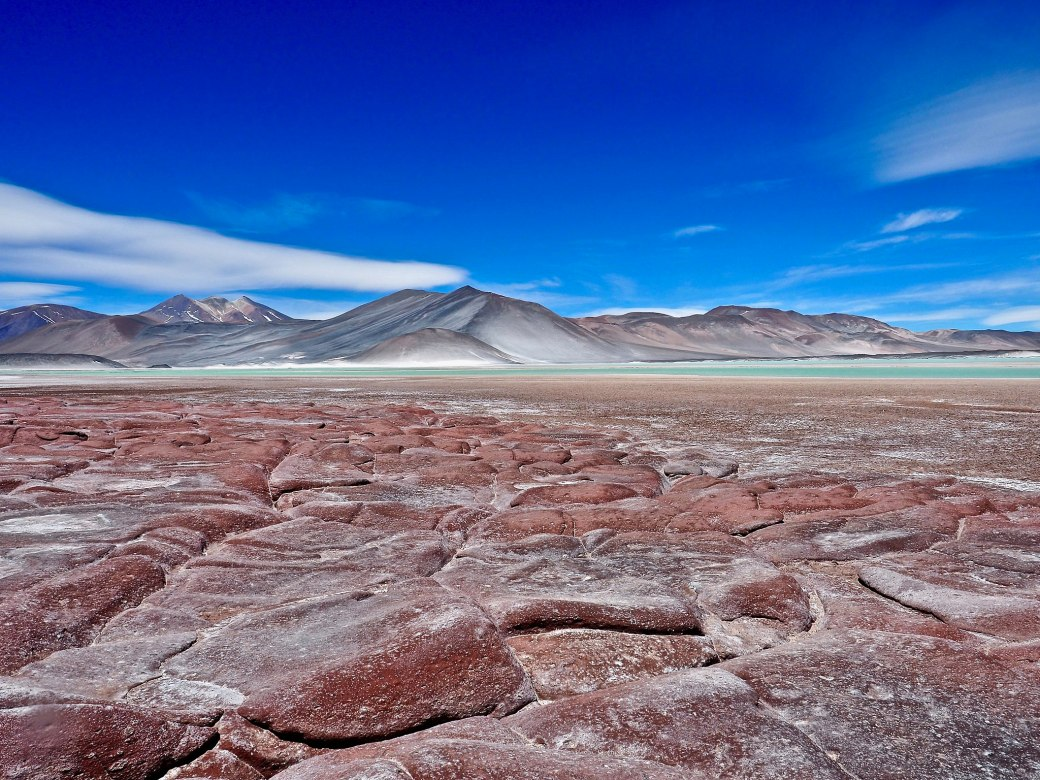 Piedras_Rojas,_Atacama_Desert,_Chile - O que fazer no Atacama