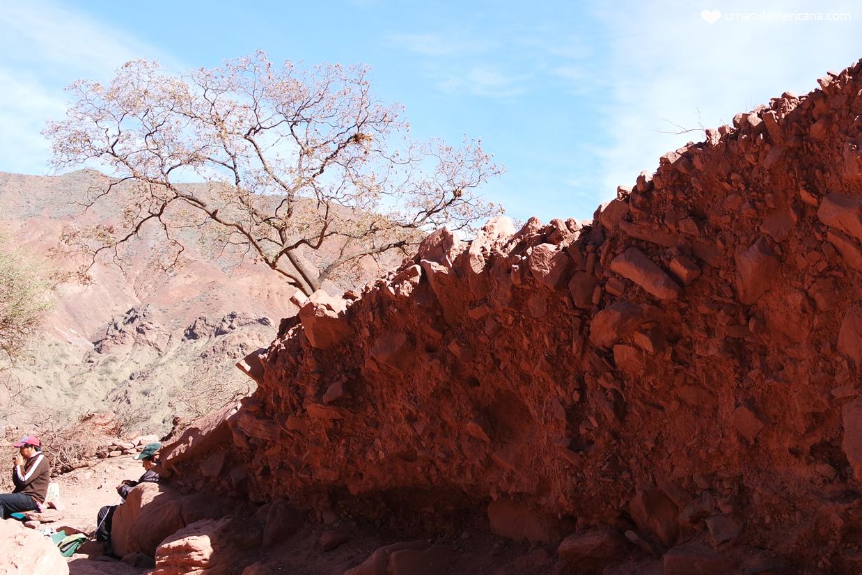 Passeios em Salta – Cafayate e Quebrada de las Conchas