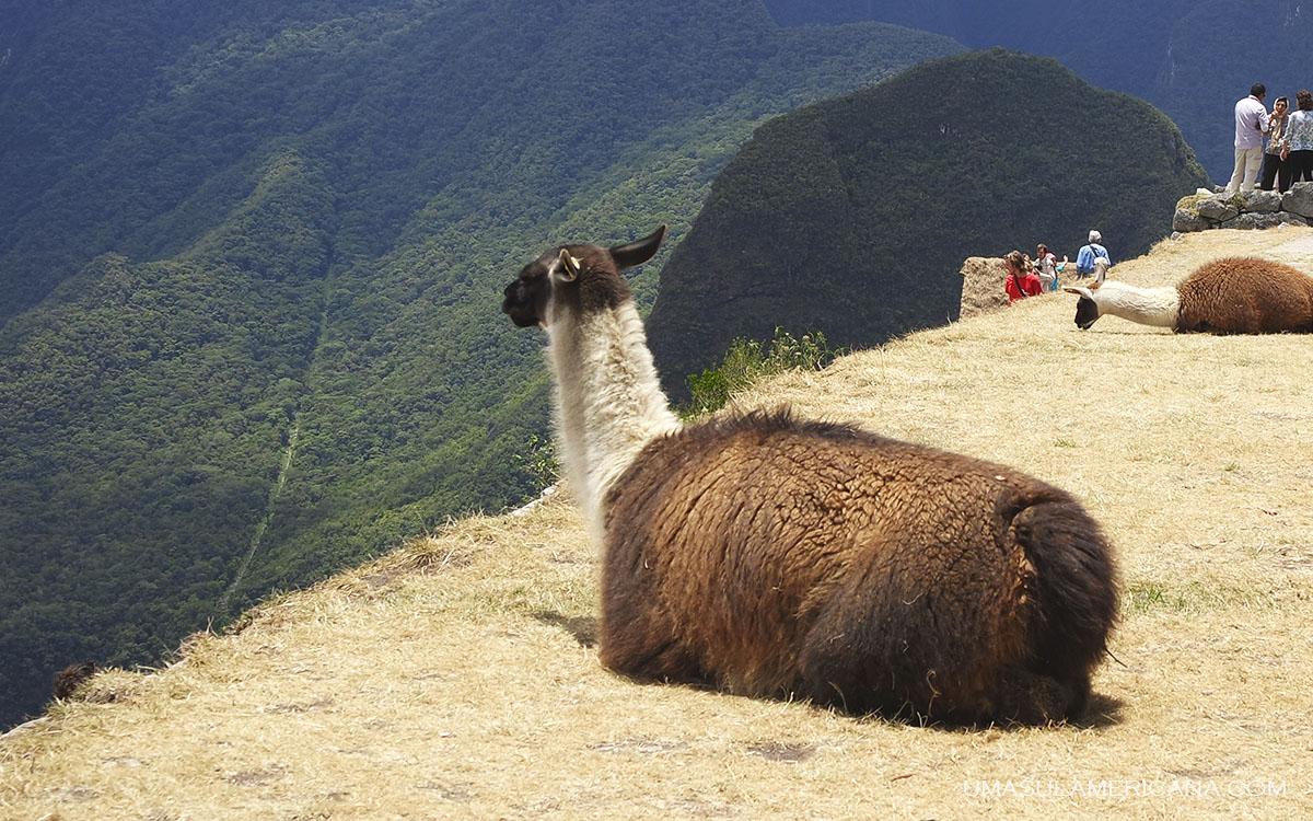 Trekking Lares - Trekkings no Peru - 15 caminhadas de norte a sul