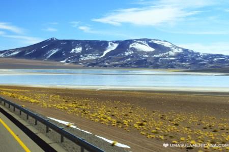 Como chegar no Atacama de ônibus vindo da Argentina