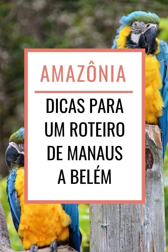 Viagem pela Amazônia, dicas para um roteiro de Manaus a Belém
