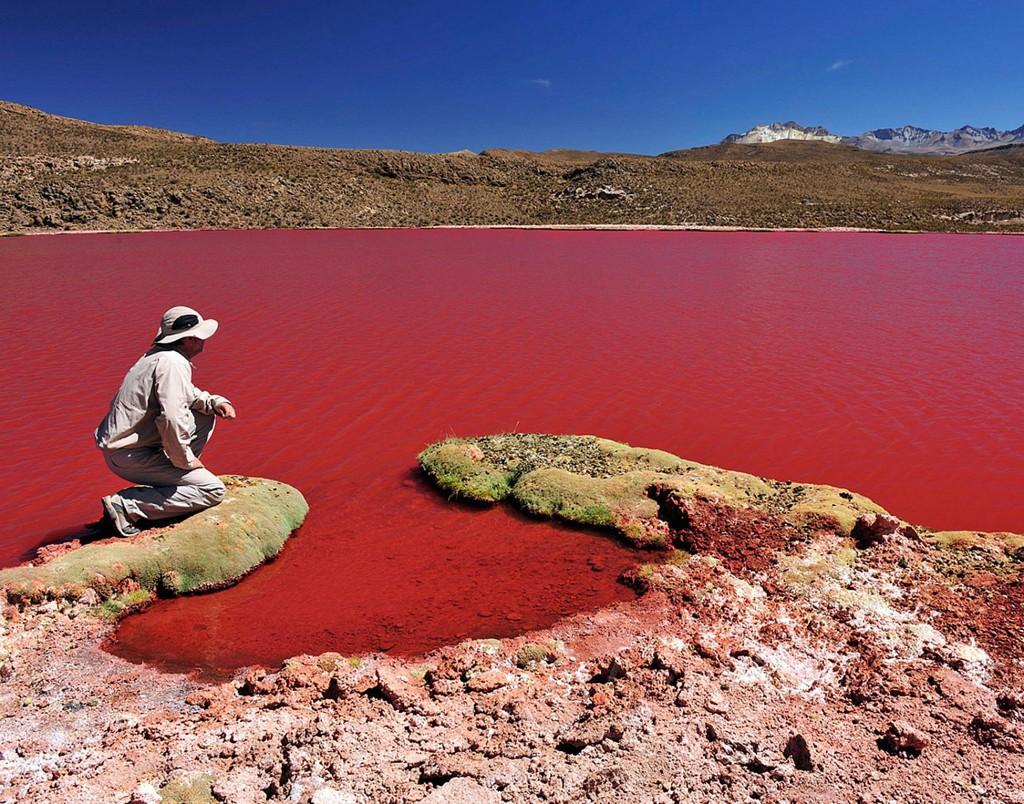 Parque Lauca - 10 destinos no Chile