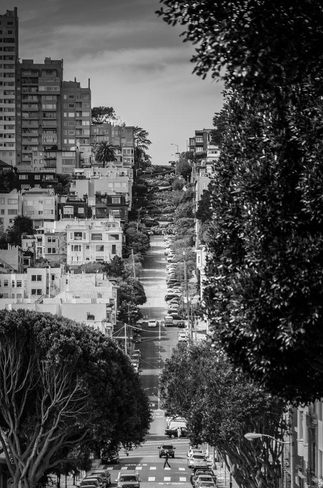 Discovering San Francisco